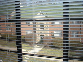 View_from_jays_window_2